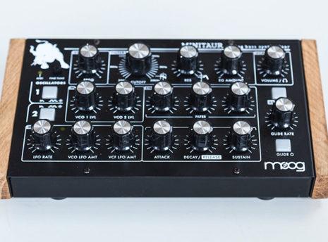 Moog Minitaur - 2 Many Synths - solid Oak side panels (4)